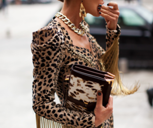 fashion, leopard, and gold image