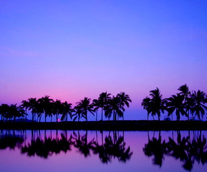 purple, blue, and summer image