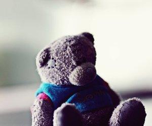 bear, fun, and grey image