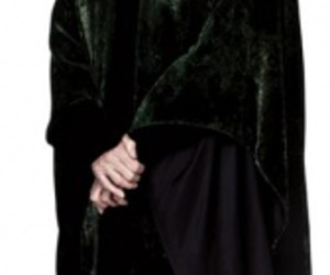 harry potter and minerva mcgonnagall image