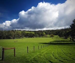 clouds, field, and grass image