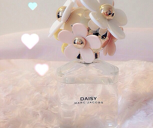 daisy, perfume, and pink image