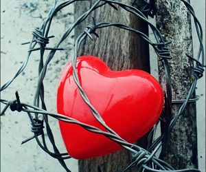 heart red love image