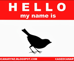 hello, hello my name is, and caged canary image