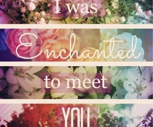 enchanted, flowers, and Taylor Swift image