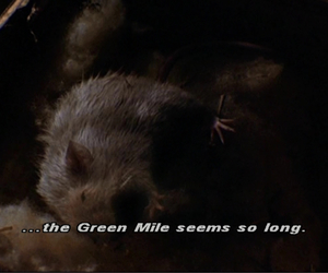 the green mile and mr. jingles image