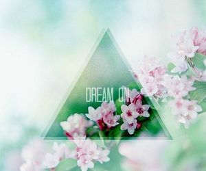 Dream, flowers, and on image