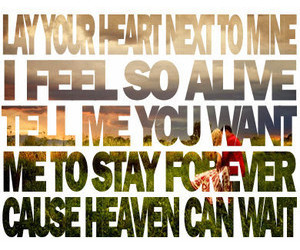 Lyrics, we the kings, and heaven can wait image