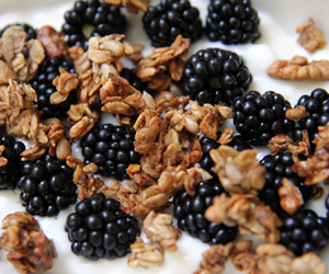 blackberries, milk, and oatmeal image