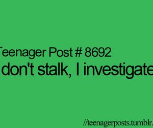 stalk, funny, and investigate image