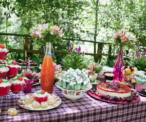 picnic party image