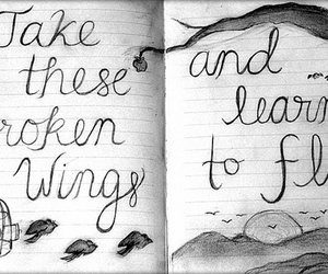fly, quote, and bird image