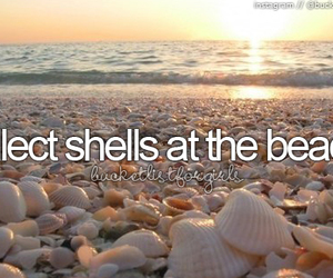 beach, shells, and bucket list image