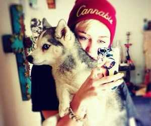 miley cyrus and dog and iphone image