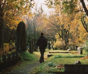 35mm, fall, and iceland image