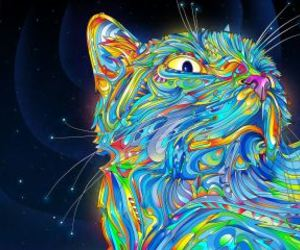 cat, drugs, and imagine image