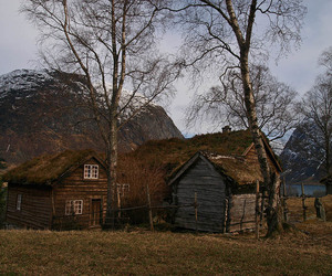 house, norway, and tree image