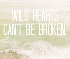 wild, broken, and quote image