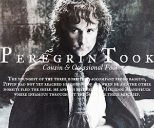 lord of the rings and pippin took image
