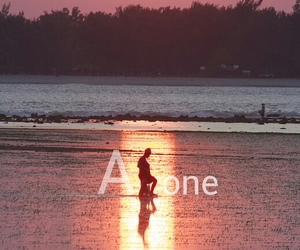 alone, bay, and pink image