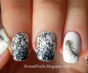 black, feather, and manicure image