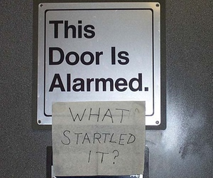 funny, door, and alarmed image