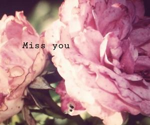 flowers, girlandboy, and pink image