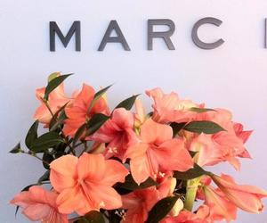 flowers, marc jacobs, and marc image