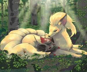 pokemon, ninetales, and zorua image