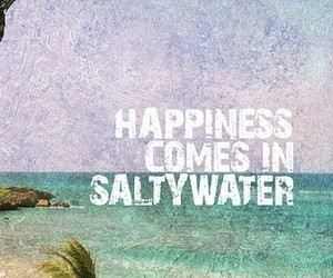 happiness, summer, and quote image