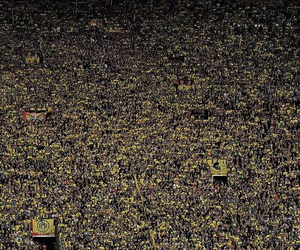 borussia dortmund, football, and bvb image