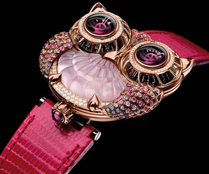 owl, pink, and watch image