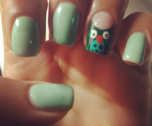 girly, owl, and green image