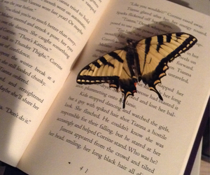 book, butterfly, and dead image