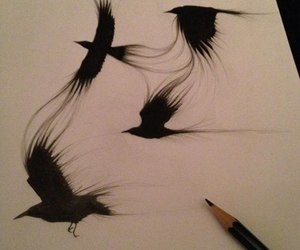 birds, drawing, and art image