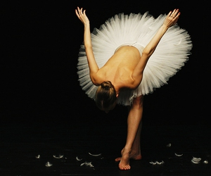 ballerina, tutu, and bow image