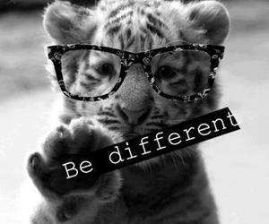different, tiger, and be different image