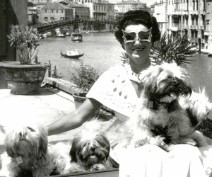dogs and peggy guggenheim image