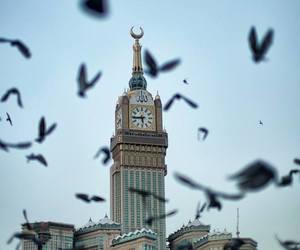 islam, mecca, and birds image