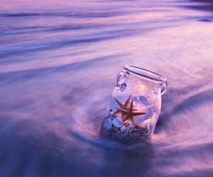 sea and starfish image