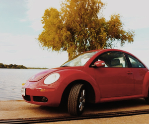 beetle, car, and classic image