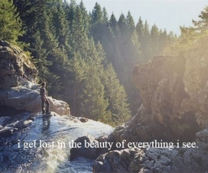 beauty, nature, and quote image