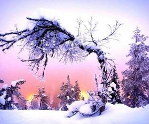 background, snow, and pink image