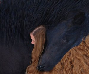horse, hair, and animal image