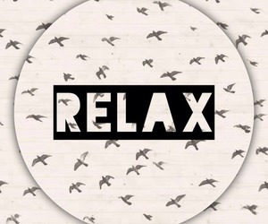 relax and bird image