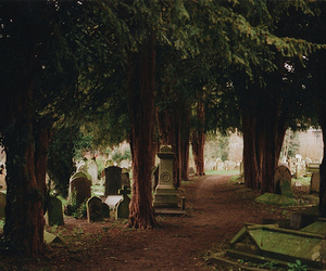 cemetery, graveyard, and trees image