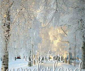 beautiful, winter, and cold image