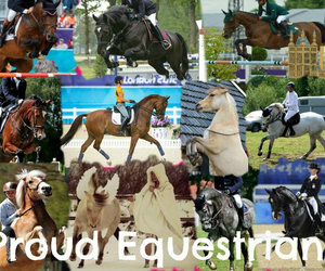 cheval, equestrian, and pferd image