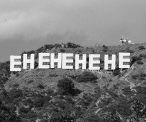 hollywood, lol, and funny image