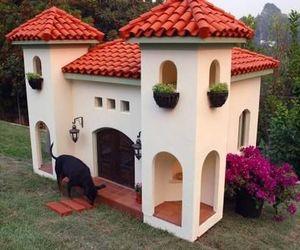 dog house, dog, and house image